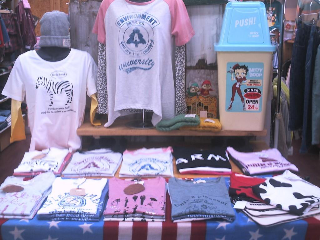 レディースTシャツ1