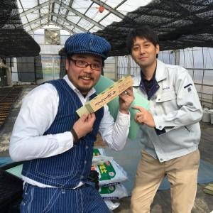 綿花山形コットン種蒔き_ペーパーポット